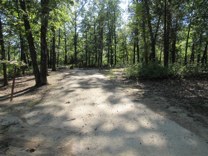 Indian Creek Site # 19