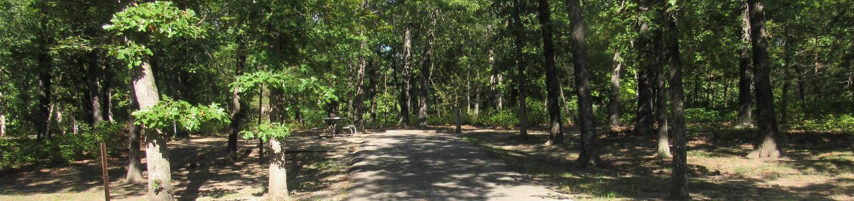 Indian Creek Site # 23