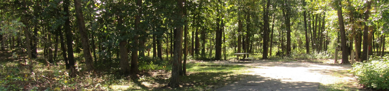 Indian Creek Site # 125