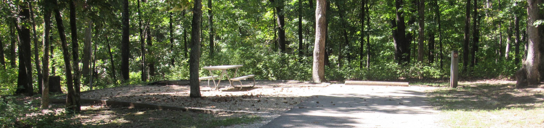 Indian Creek Site # 131
