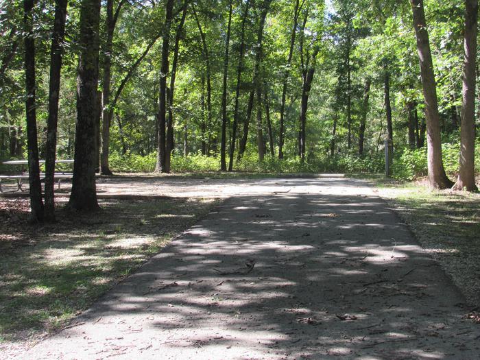 Indian Creek Site # 138
