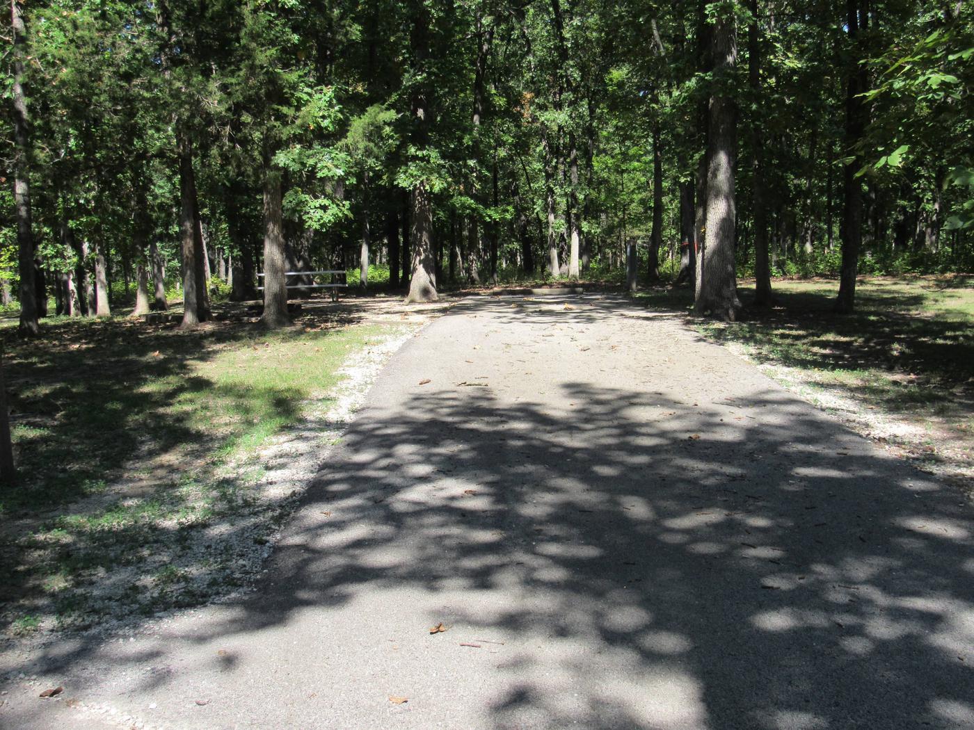 Indian Creek Site # 141