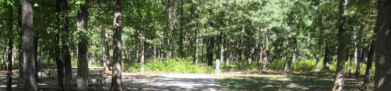 Indian Creek Site # 145