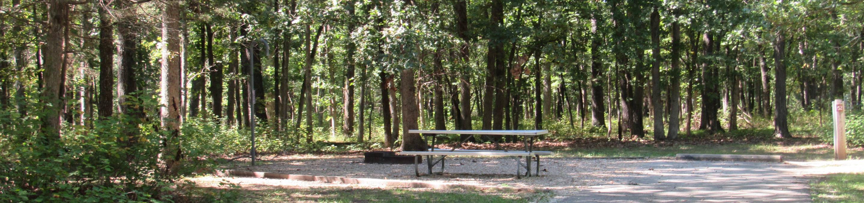 Indian Creek Site # 152