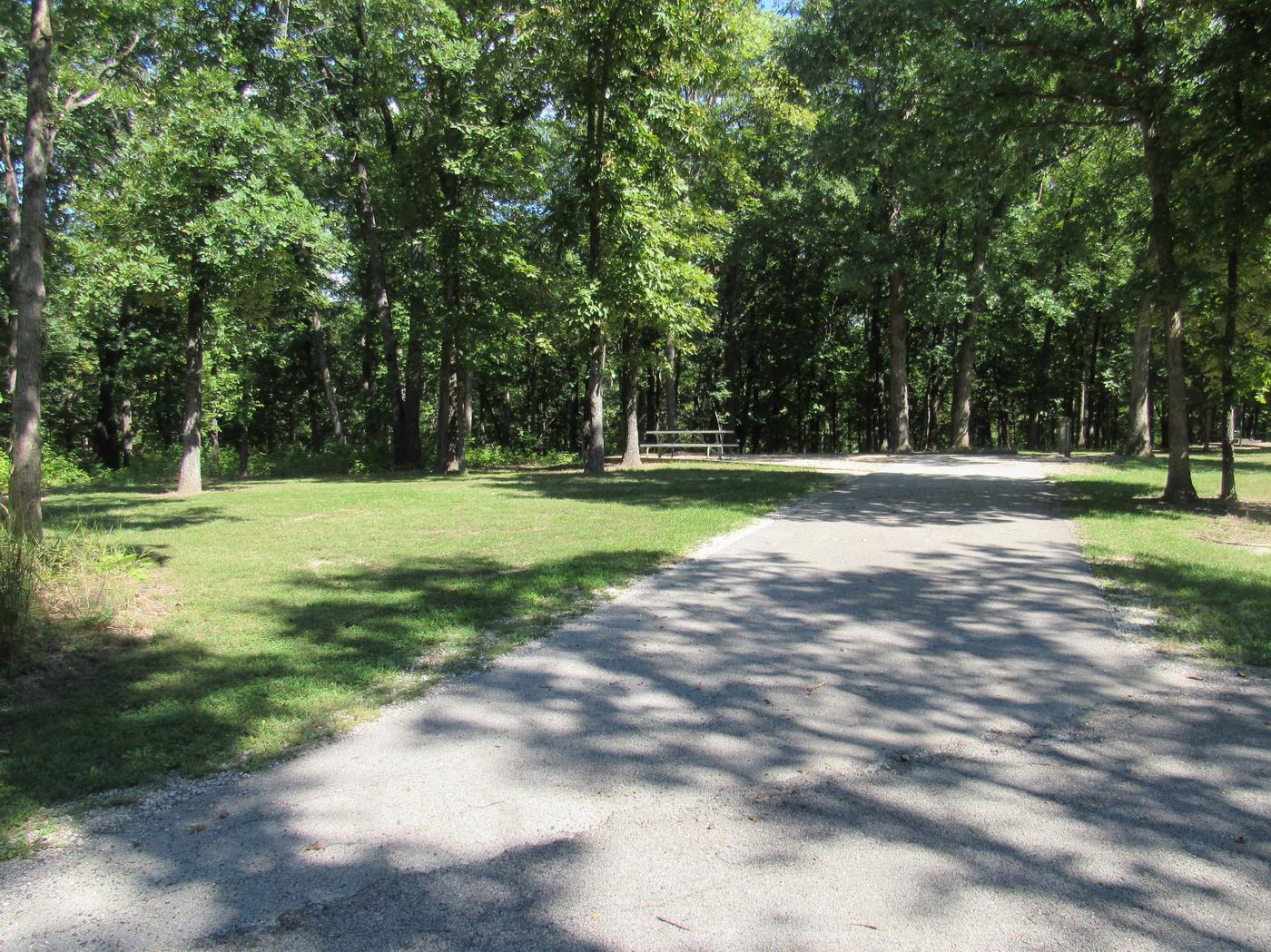 Indian Creek Site # 162