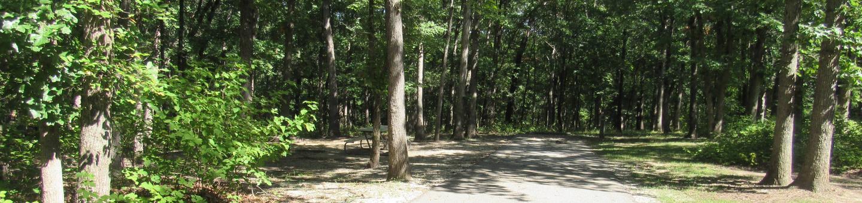 Indian Creek Site # 164
