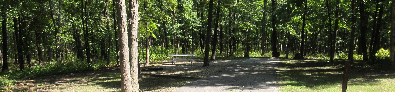 Indian Creek Site # 167