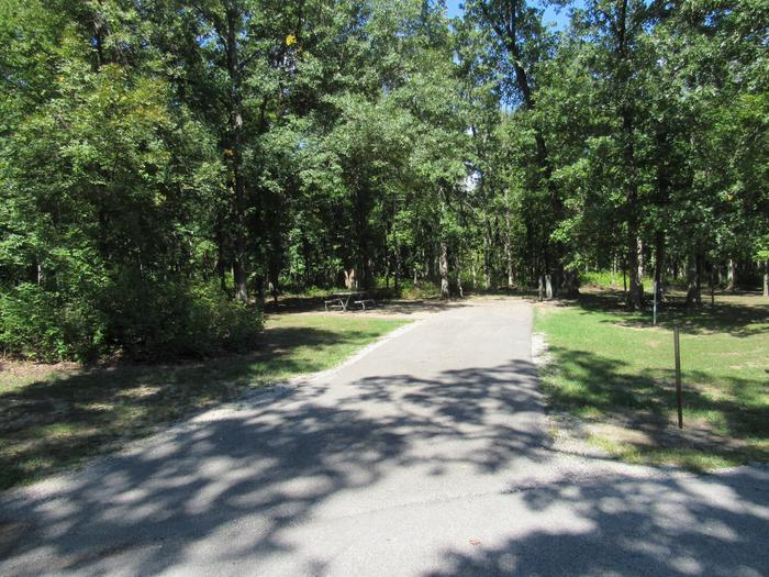Indian Creek Site # 175