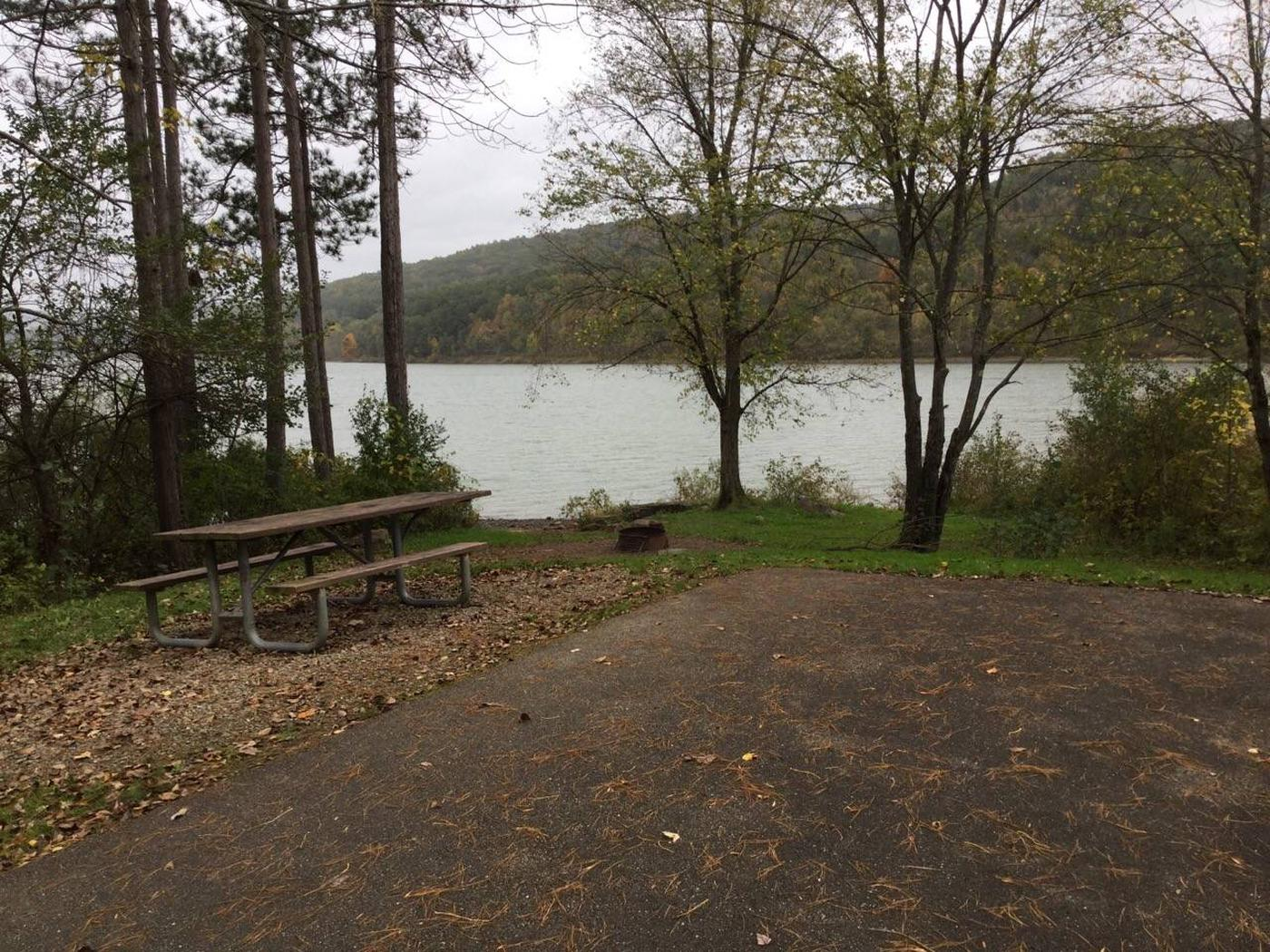 Willow Bay Recreation Area: Site 68
