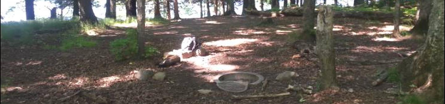 primitive fire ring with grill, water viewkind of close to trail; room for multiple tents.