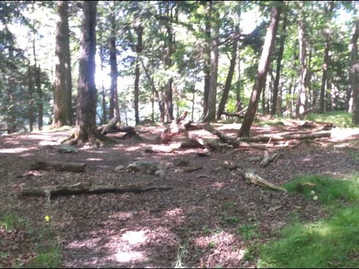Campsite photo.Ash 2 campsite photo.