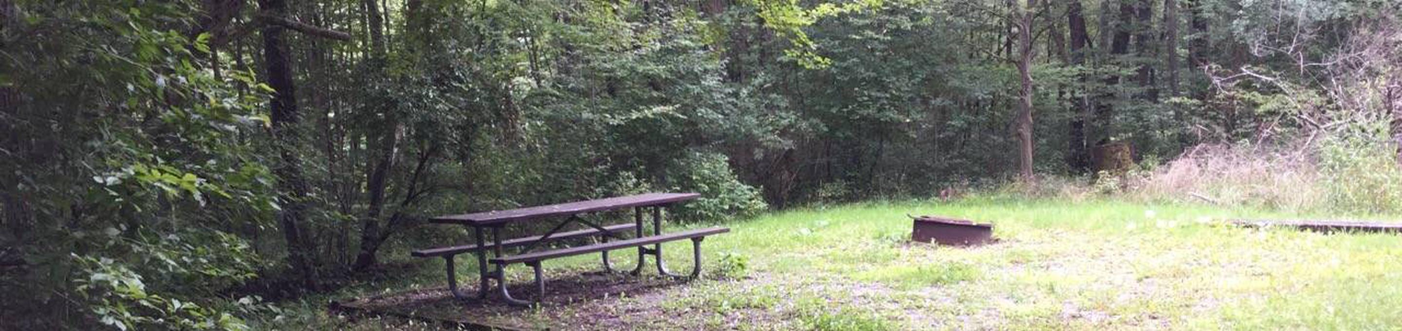 Twin Lakes Recreation Area: Site 28