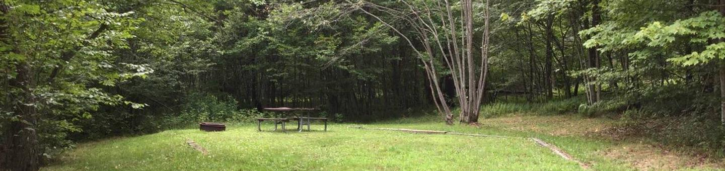 Twin Lakes Recreation Area: Site 31