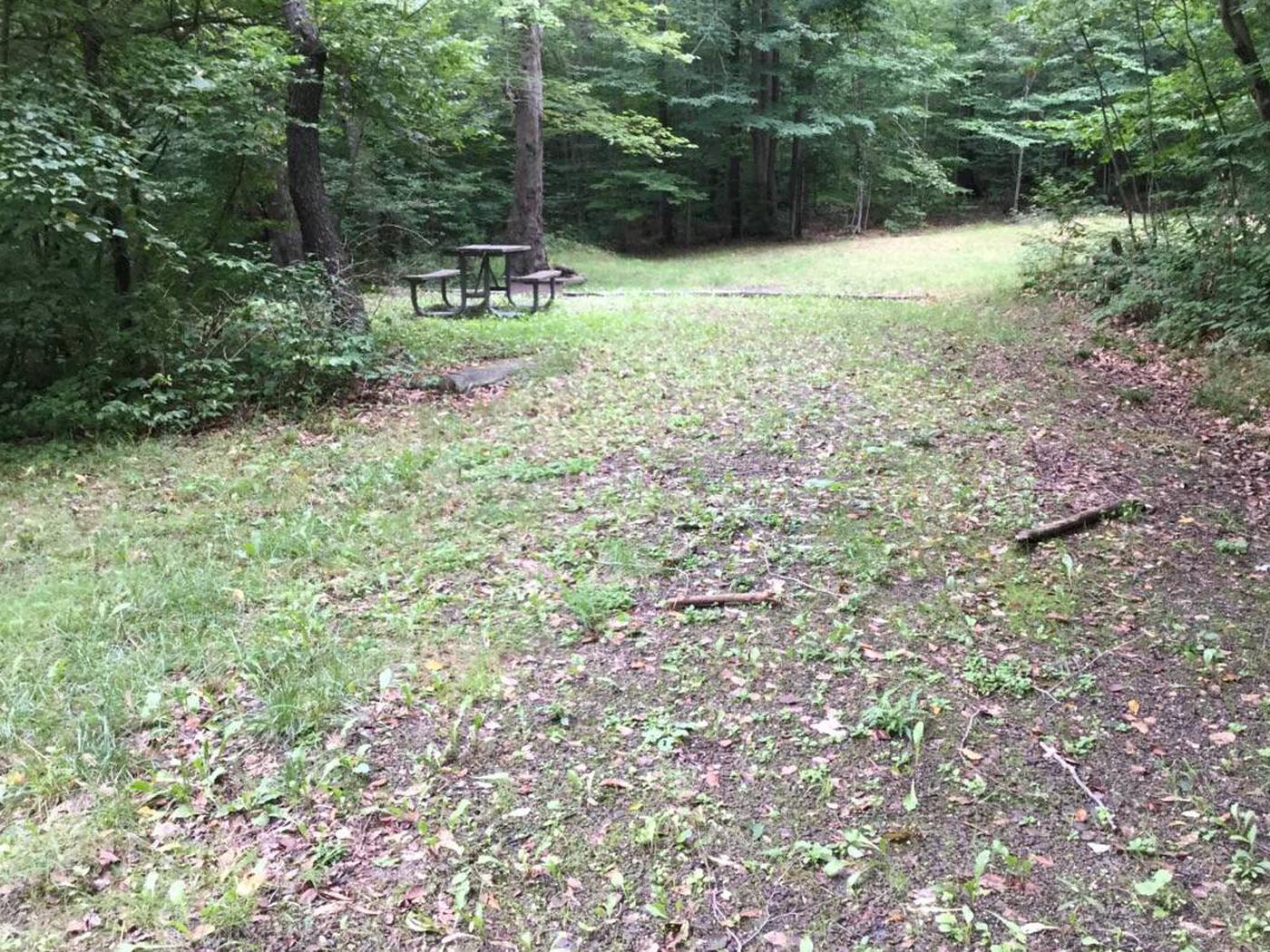 Twin Lakes Recreation Area: Site 36