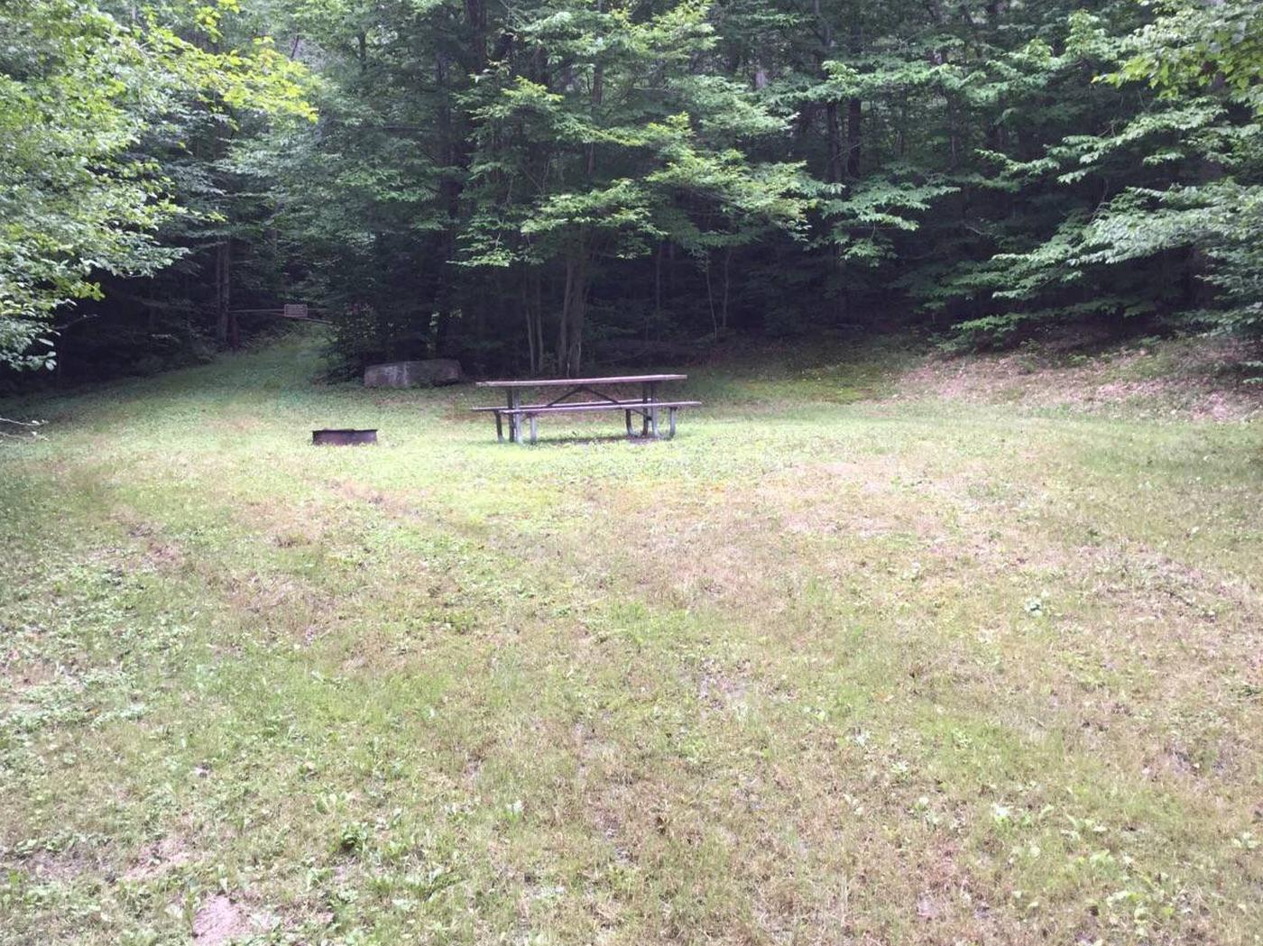Twin Lakes Recreation Area: Site 37