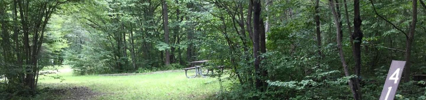 Twin Lakes Recreation Area: Site 41