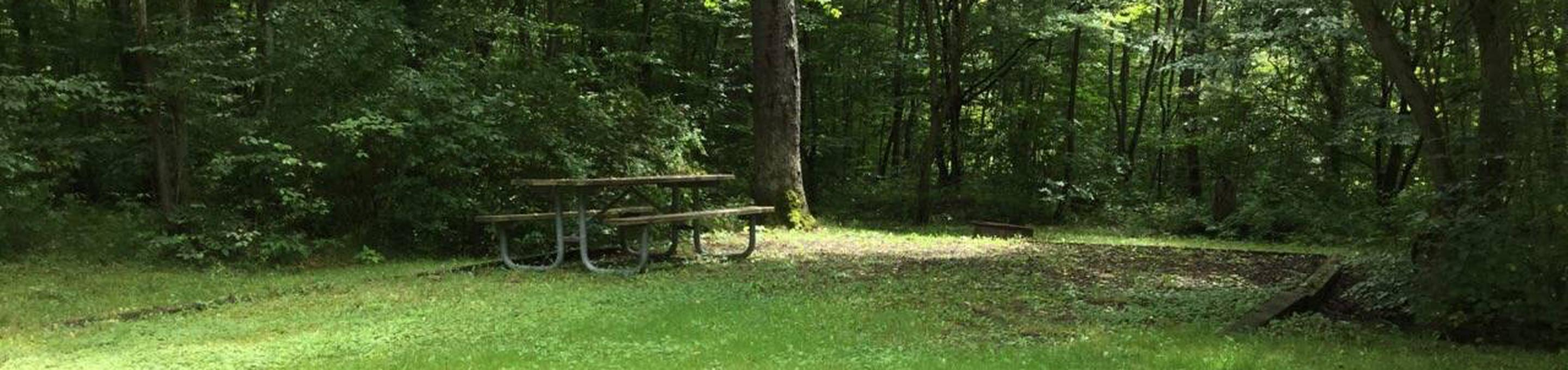 Twin Lakes Recreation Area: Site 42