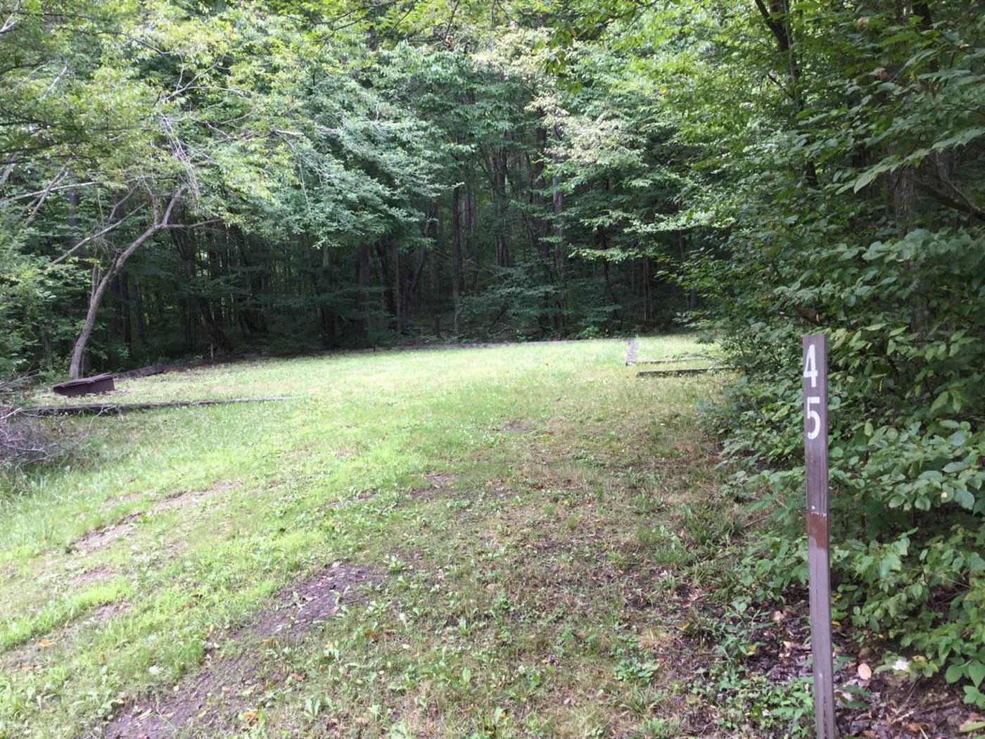 Twin Lakes Recreation Area: Site 45