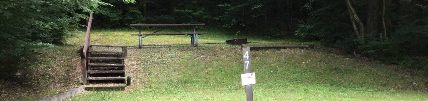 Twin Lakes Recreation Area: Site 47