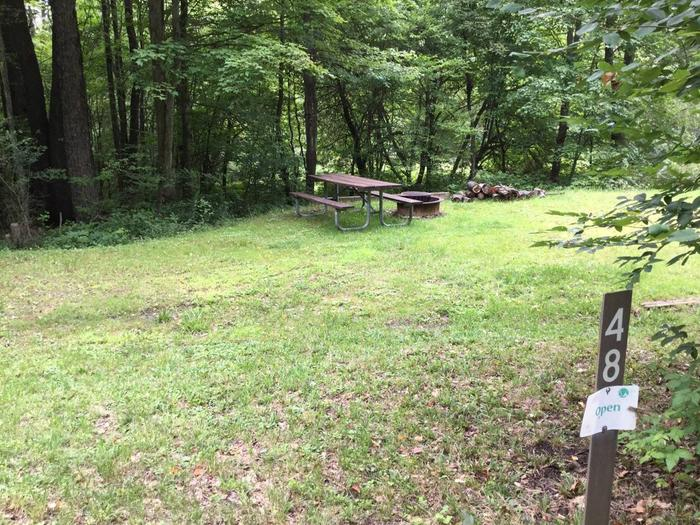 Twin Lakes Recreation Area: Site 48