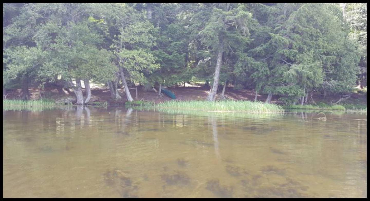Badger 1 Landing photo.This landing has trees surrounding the landing spot and shallow water present in the bay area.