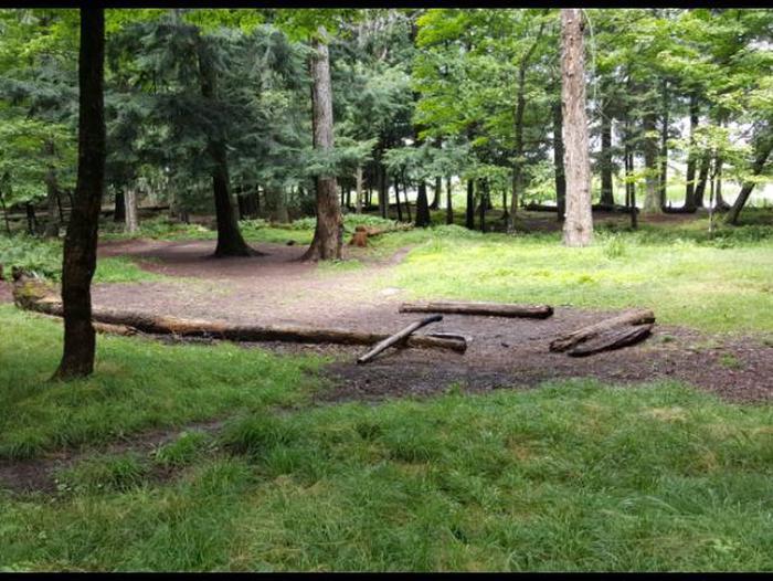 Badger 2 Campsite photo.Campsite photo.