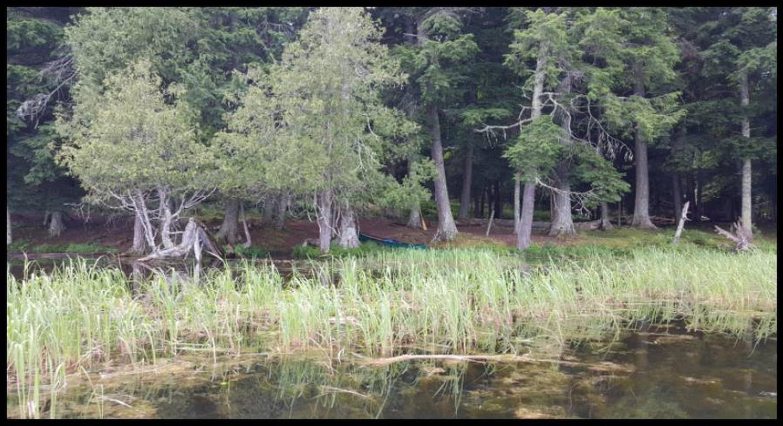 Badger 2 Landing photo.Landing photo.