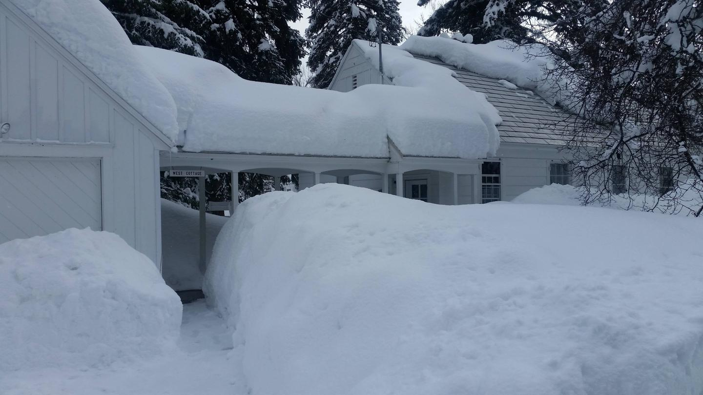 Savenac West Cottage
