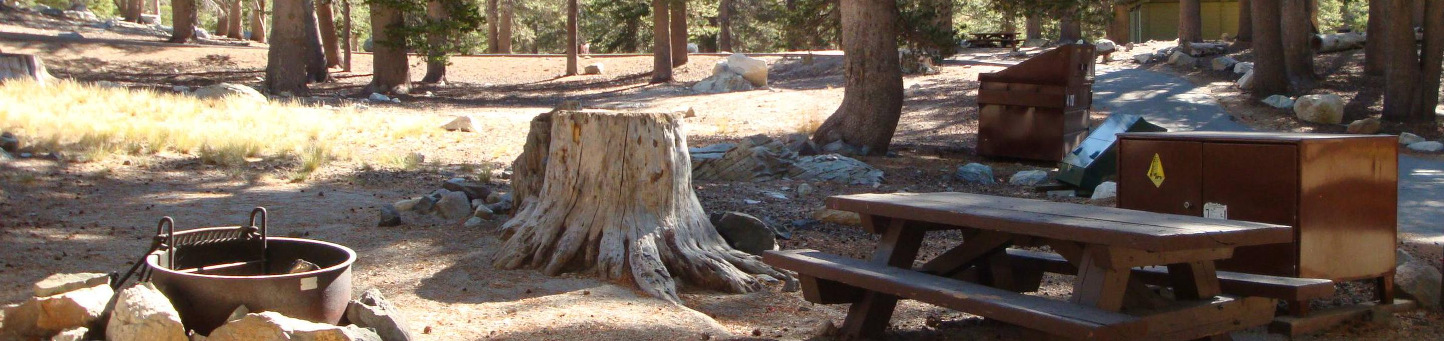 Lake Mary Campground SITE 7
