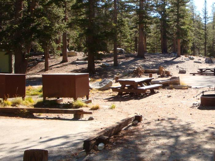 Lake Mary Campground SITE 11