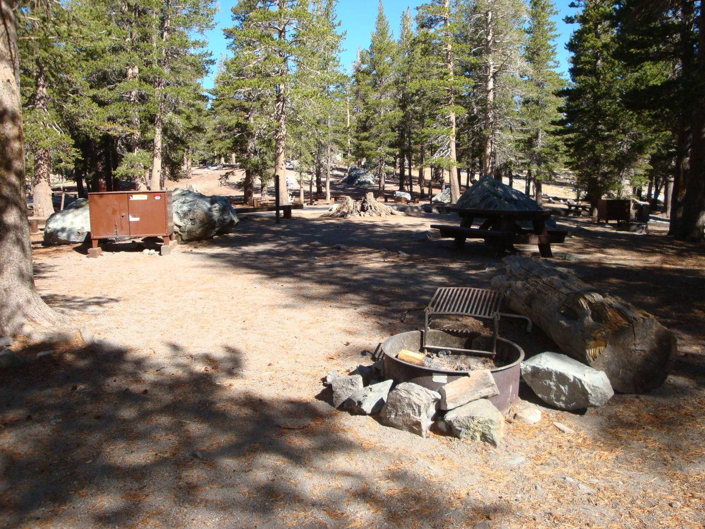 Lake Mary Campground SITE 20