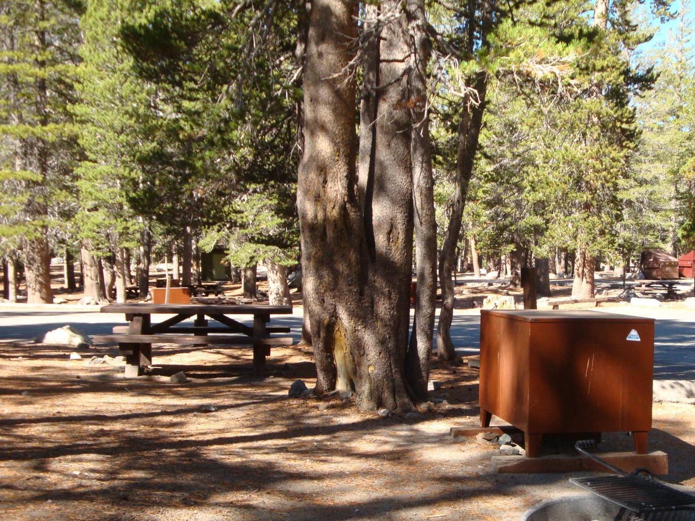 Lake Mary Campground SITE 28