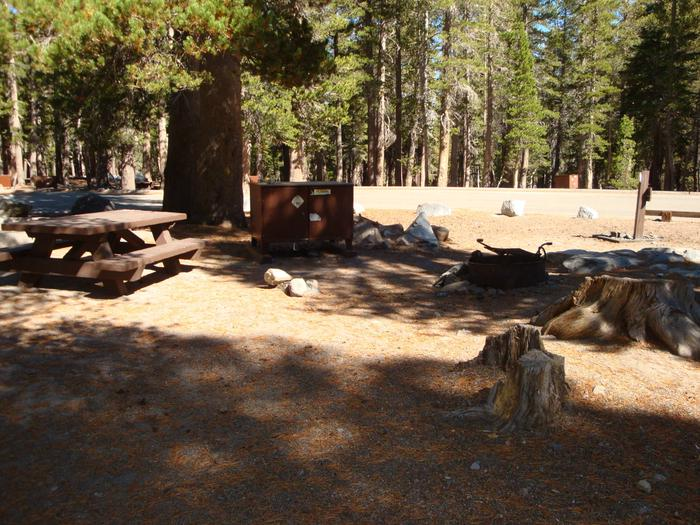 Lake Mary Campground SITE 43