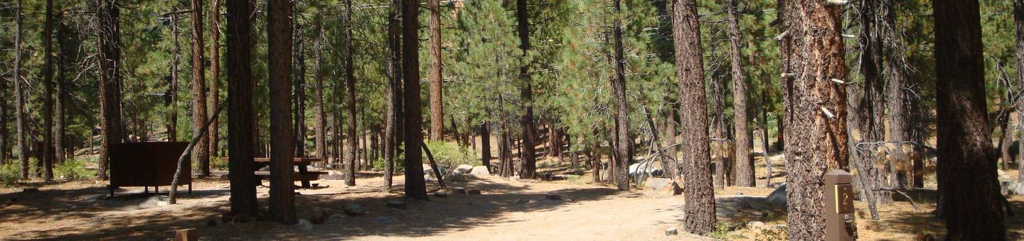 Old Shady Rest Campground SITE 2