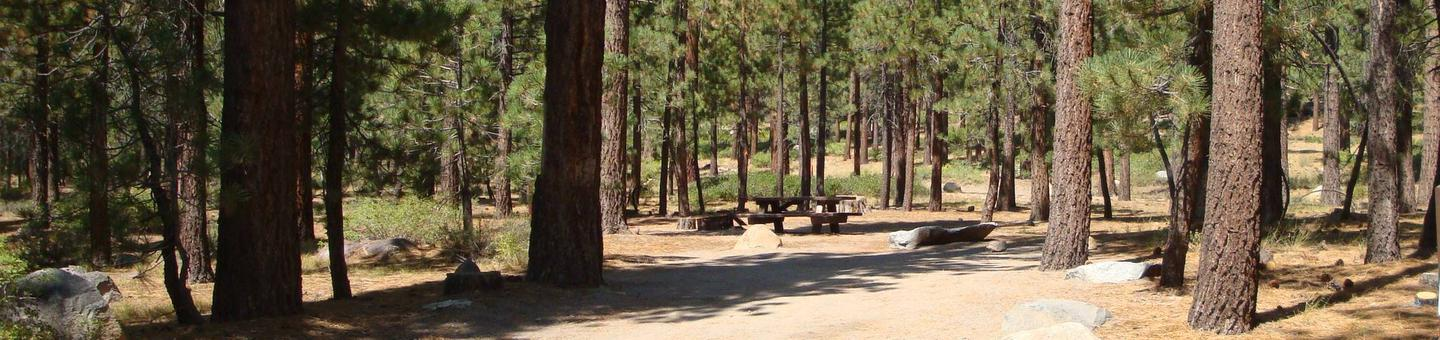 Old Shady Rest Campground SITE 4