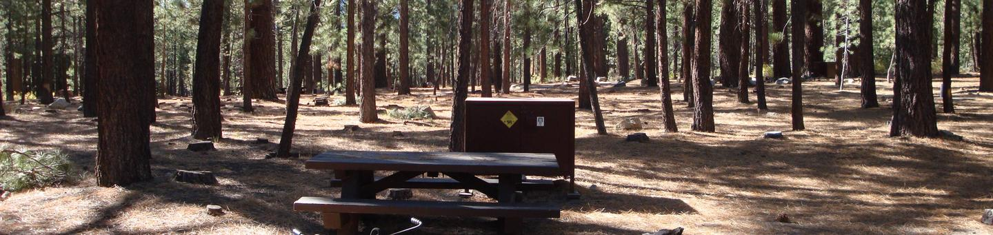 Old Shady Rest Campground SITE 5