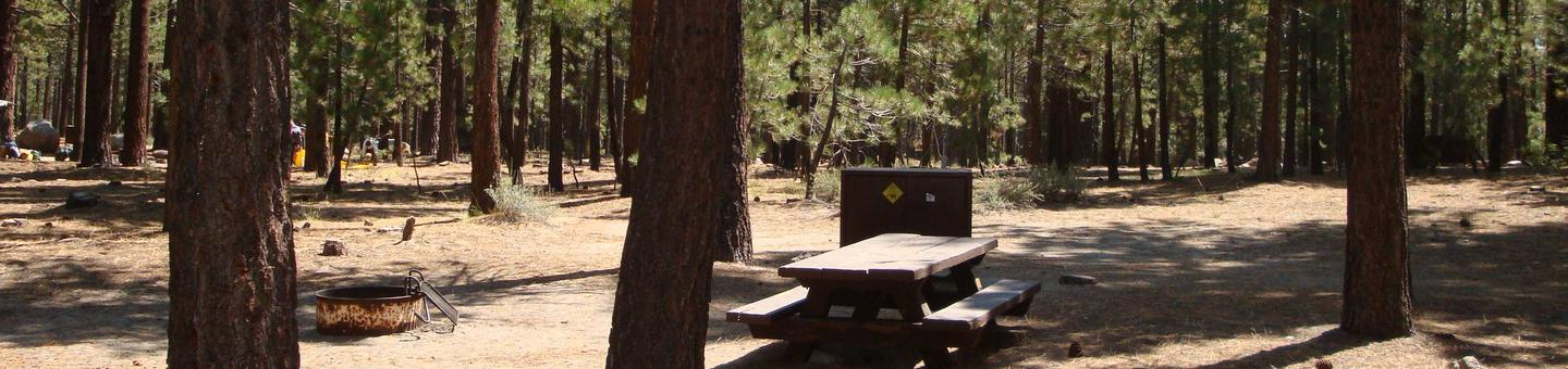 Old Shady Rest Campground SITE 7