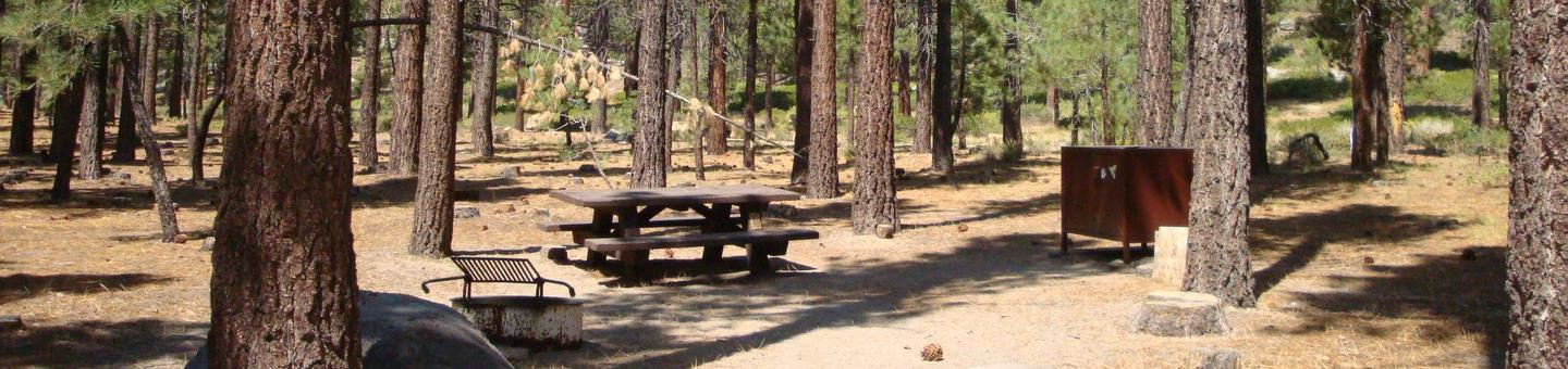 Old Shady Rest Campground SITE 8