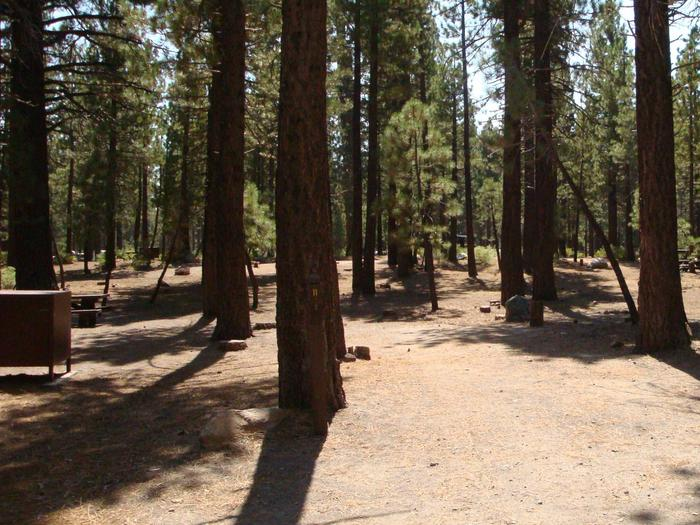 Old Shady Rest Campground SITE 11