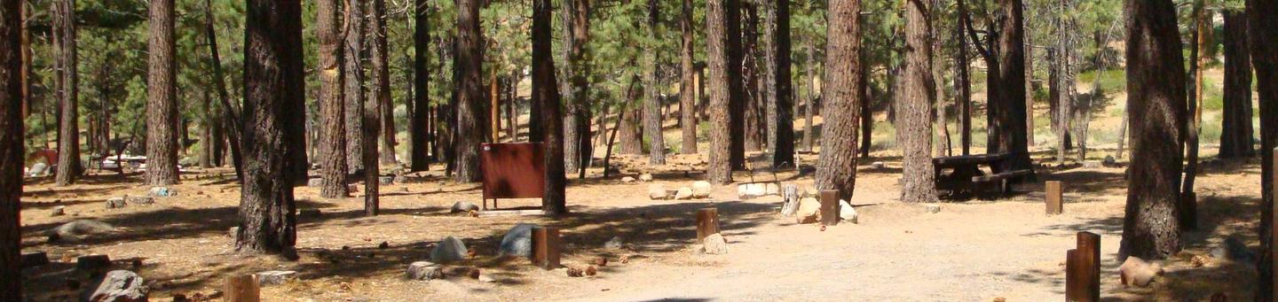 Old Shady Rest Campground SITE 14