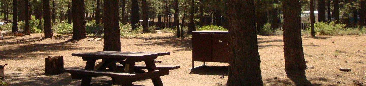 Old Shady Rest Campground SITE 15