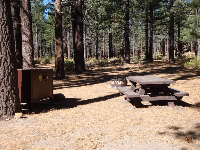 Old Shady Rest Campground SITE 17
