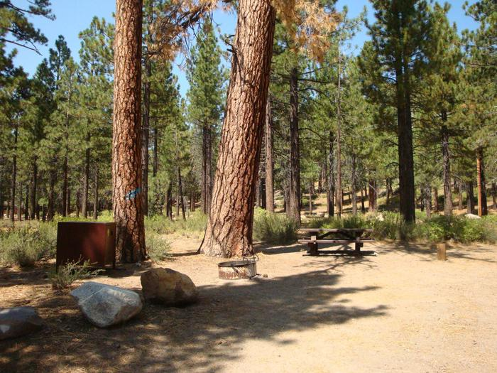 Old Shady Rest Campground SITE 19