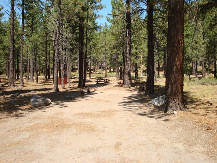 Old Shady Rest Campground SITE 20