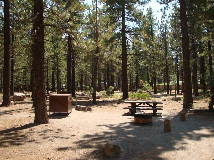 Old Shady Rest Campground SITE 21