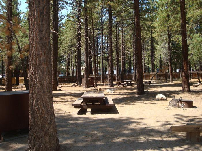 Old Shady Rest Campground SITE 22