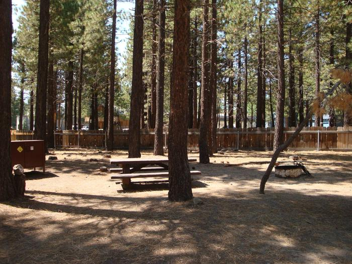 Old Shady Rest Campground SITE 23