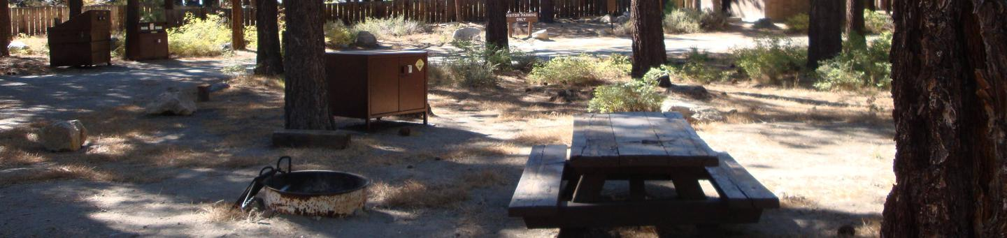 Old Shady Rest Campground SITE 26