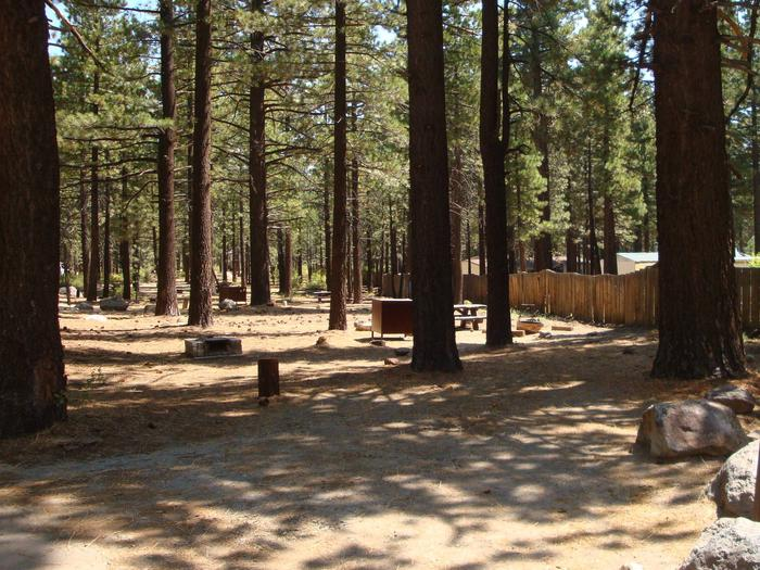 Old Shady Rest Campground SITE 31