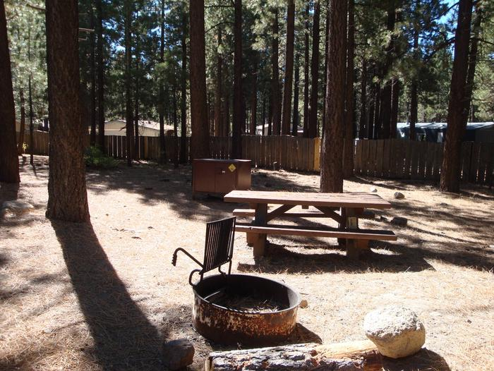 Old Shady Rest Campground SITE 35